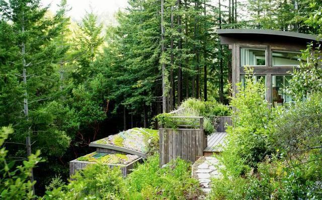 【飞达花园生活】自建房别墅 看人家的屋顶花园美不美
